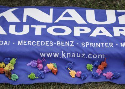KnauzAutoPark